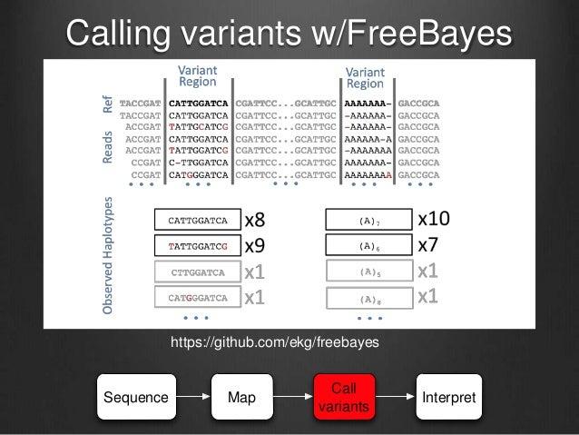 Most differences are ~uninterpretable! Total variants: 5,562,545 Between genes: 3,032,670 Between parts of genes (exons): ...