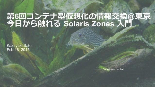 第6回コンテナ型仮想化の情報交換@東京 今⽇日から触れる Solaris Zones ⼊入⾨門 Kazuyuki Sato Feb 18, 2015 Corydoras  sterbai