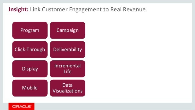 Insight: Link Customer Engagement to Real Revenue Program Click-Through Campaign Deliverability Display Incremental Life M...