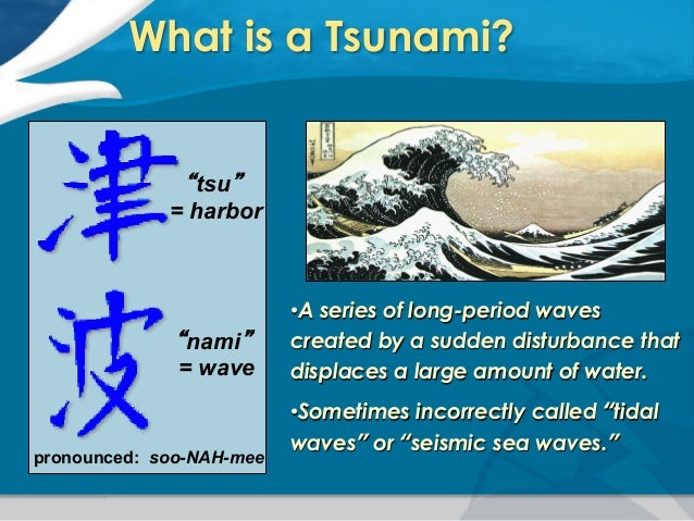 Pacific Tsunami Warning Center: Introduction to Tsunamis and PTWC Ope…