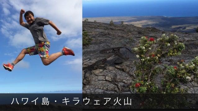 ハワ イ 島 ・ キ ラ ウ ェ ア 火 山