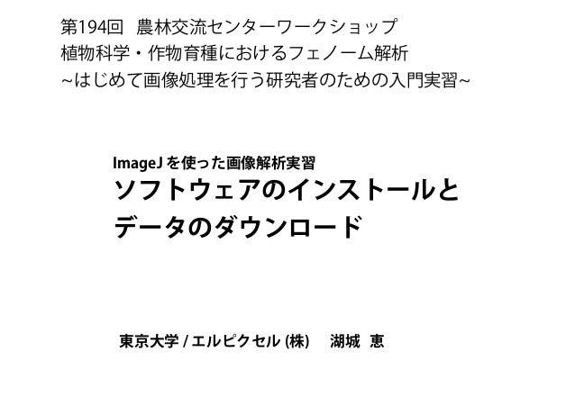 第194回 農林交流センターワークショップ 植物科学・作物育種におけるフェノーム解析 はじめて画像処理を行う研究者のための入門実習 ImageJ を使った画像解析実習 ソフトウェアのインストールと データのダウンロード 東京大学 / エルピクセ...
