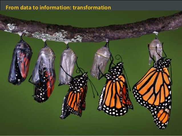 Big Data Expo – From data to information: transformation