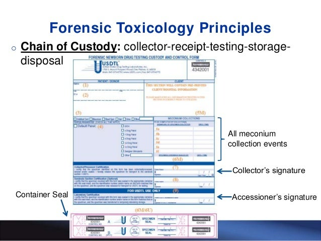 The Importance of Following Forensic Principles in Newborn Drug Testi…