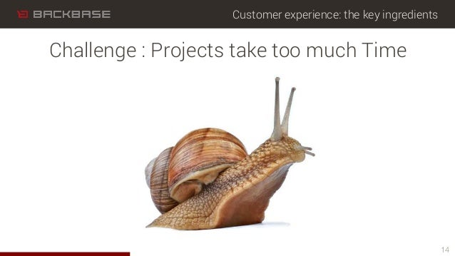 Customer experience: the key ingredients 14 Challenge : Projects take too much Time