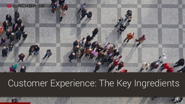 8 Customer Experience: The Key Ingredients
