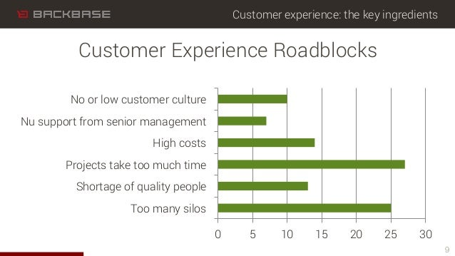 Customer experience: the key ingredients 0 5 10 15 20 25 30 Too many silos Shortage of quality people Projects take too mu...