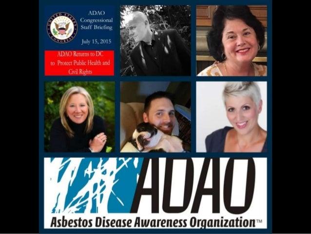 Linda Reinstein: 2015 ADAO U.S. Congressional Staff Briefing