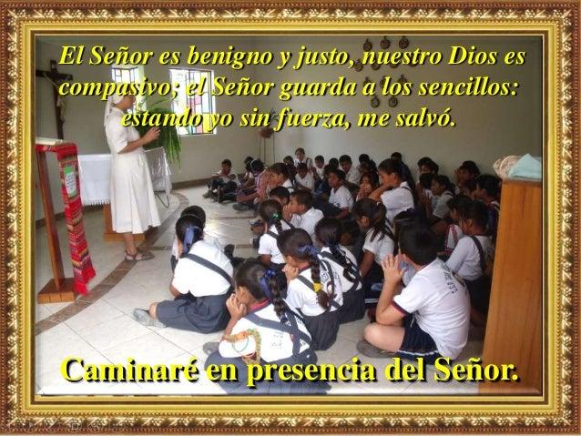 Motivación: Comentando este texto, dice san Vicente a los misioneros: En efecto, esta preocupación por vivir, este miedo a...