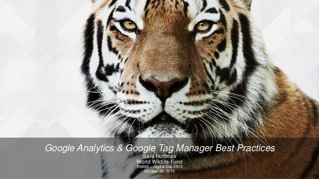Google Analytics & Google Tag Manager Best Practices Sara Hoffman World Wildlife Fund DMAW – Digital Day 2015 October 20, ...
