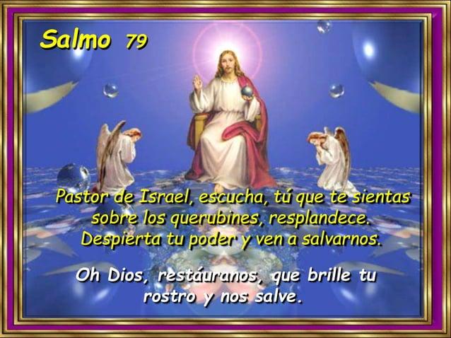 Viendo que la fe, la debemos transmitir y testimoniar, en estos días previos a la Navidad, ¿a quiénes debo salir a buscar ...