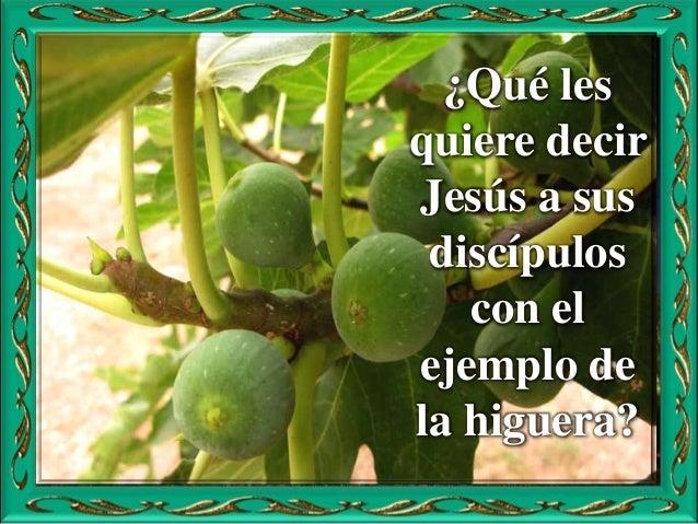 Motivación: Vivimos aguardando la manifestación definitiva de Jesucristo. Es tiempo de sostener la fe, de arriesgar la vid...