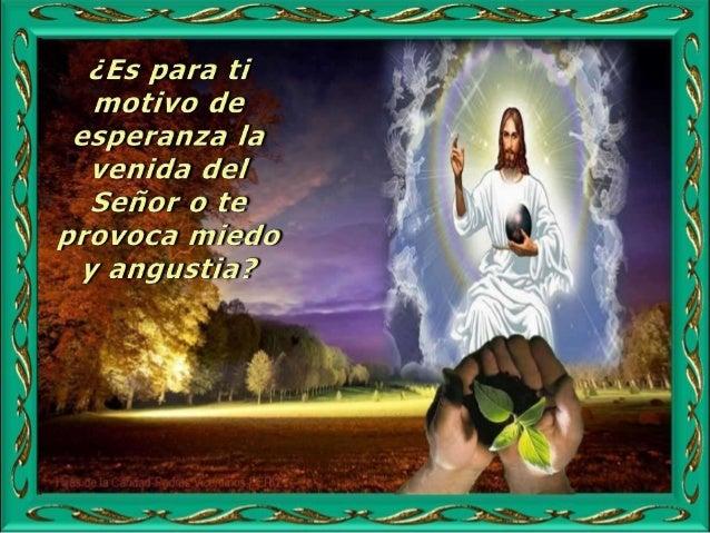 Protégeme, Dios mío, que me refugio en ti. Por eso se me alegra el corazón, se gozan mis entrañas, y mi carne descansa ser...