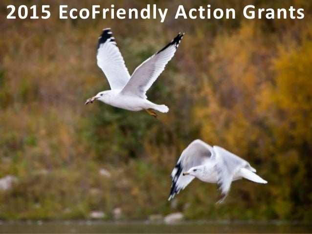2015 EcoFriendly Action Grants