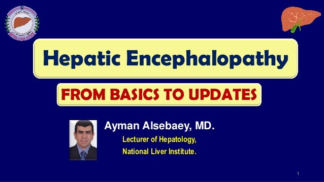 Hepatic Encephalopathy Ayman Alsebaey, MD. Lecturer of Hepatology, National Liver Institute. 1 FROM BASICS TO UPDATES