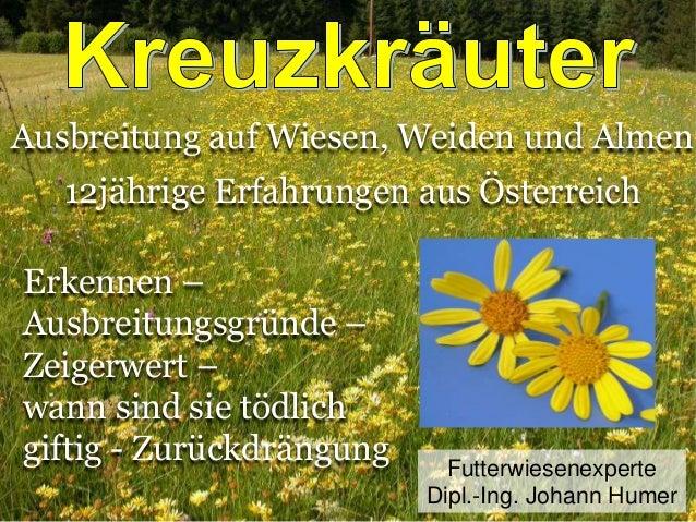 Ausbreitung auf Wiesen, Weiden und Almen 12jährige Erfahrungen aus Österreich Erkennen – Ausbreitungsgründe – Zeigerwert –...