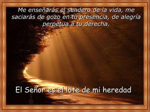¿Qué me lleva a hacer el texto?IV. CONTEMPLATIO Motivación: De los escritos de Santa Rosa de Lima: El salvador levantó la ...