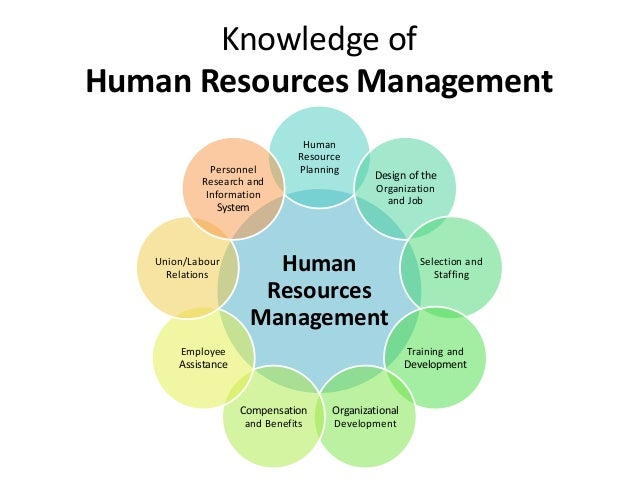 knowledge management and creative human resource Interests: big data knowledge management human resource management   open accesseditorial knowledge management, innovation and big data:.