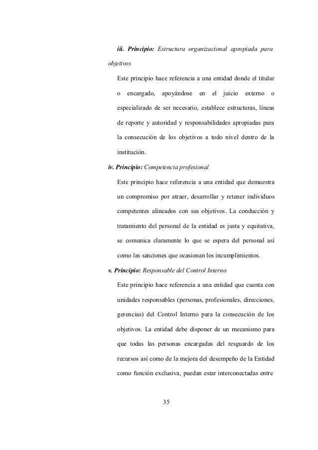35 iii. Principio: Estructura organizacional apropiada para objetivos Este principio hace referencia a una entidad donde e...