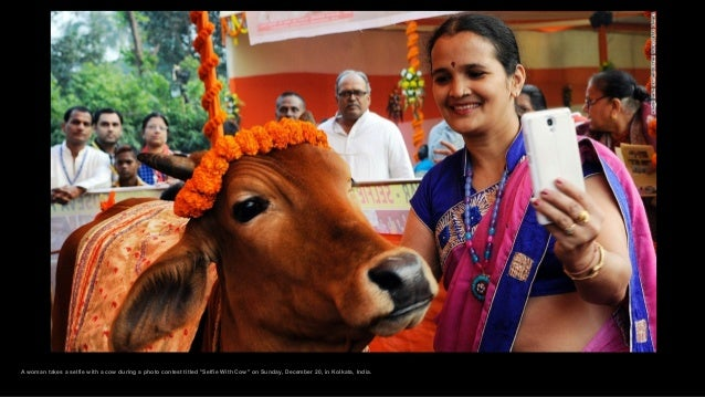 """A woman takes a selfie with a cow during a photo contest titled """"Selfie With Cow"""" on Sunday, December 20, in Kolkata, Indi..."""