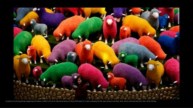 A woman at a Hong Kong shopping mall takes a selfie in front of colored sheep on Friday, February 13. It was a display for...