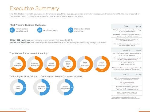 2015 State of B2B Marketing Slide 3