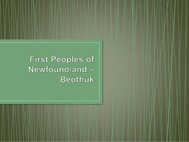 a study on the beothuk people of newfoundland The beothuk were an indigenous people based on the island of newfoundland   beginning  the site was found in 1981 during an archeological survey to  locate beothuk sites, in order to study their artifacts and gain more insight into.