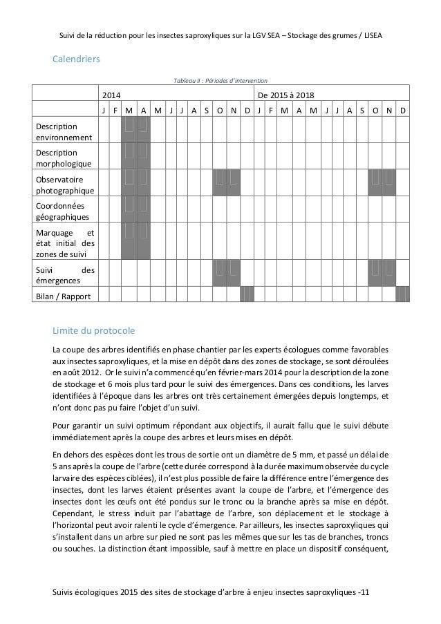 Suivi 2015 des stocks de grumes enjeux insectes sapro - Coupe branche brico depot ...
