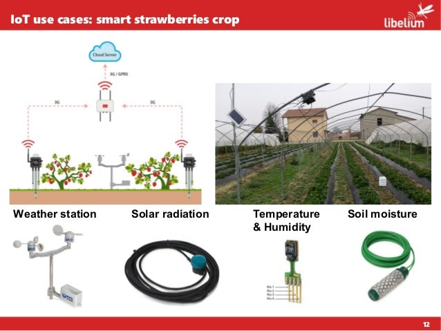 12 IoT use cases: smart strawberries crop Weather station Solar radiation Soil moistureTemperature & Humidity