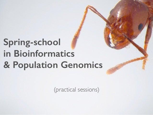 Spring-school in Bioinformatics & Population Genomics (practical sessions)