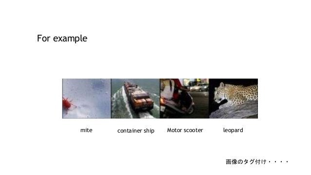 For example container shipmite Motor scooter leopard 画像のタグ付け・・・・