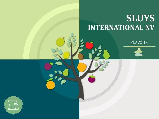 SLUYS INTERNATIONAL NV FLAVOUR