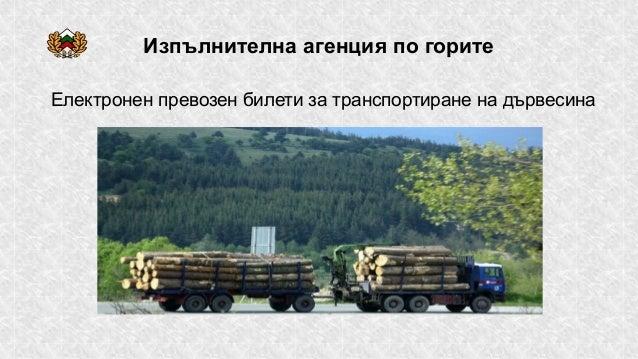 Изпълнителна агенция по горите Електронен превозен билети за транспортиране на дървесина