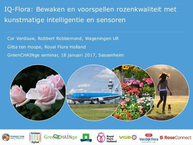 IQ-Flora: Bewaken en voorspellen rozenkwaliteit met kunstmatige intelligentie en sensoren Cor Verdouw, Robbert Robbemond, ...