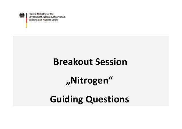 "Breakout Session ""Nitrogen"" Guiding Questions"