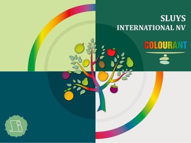 SLUYS INTERNATIONAL NV COLOURANT