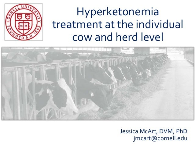 Hyperketonemia treatment at the individual cow and herd level Jessica McArt, DVM, PhD jmcart@cornell.edu