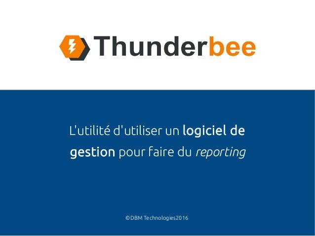 ©DBM Technologies2016 L'utilité d'utiliser un logiciel de gestion pour faire du reporting