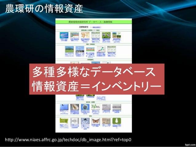 農環研の情報資産 http://www.niaes.affrc.go.jp/techdoc/db_image.html?ref=top0 多種多様なデータベース 情報資産=インベントリー