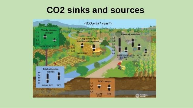 ghg pesticide Mitigation of pesticide runoff using woodchip bioreactors pesticide detections at the sea mist farms bioreactor and greenhouse gas mitigation 2012 [4.