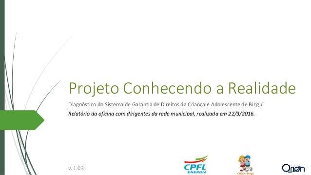 Projeto Conhecendo a Realidade Diagnóstico do Sistema de Garantia de Direitos da Criança e Adolescente de Birigui Relatóri...