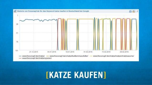 ;V  Historie von fressnaptde filr das Keyword katze kaufen in Deutschland bei Google 5  )#  ,  1 r 26 ' 1 ' 51 3:2 ,  ' 76...