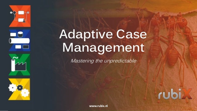 Adaptive Case Management Mastering the unpredictable www.rubix.nl