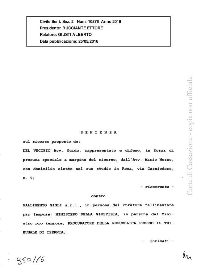 SENTENZA sul ricorso proposto da: DEL VECCHIO Avv. Guido, rappresentato e difeso, in forza di procura speciale a margine d...