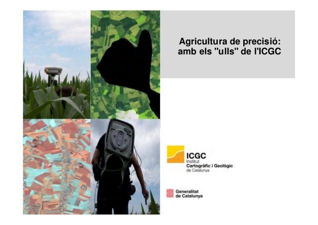 """Agricultura de precisió: amb els """"ulls"""" de l'ICGC"""