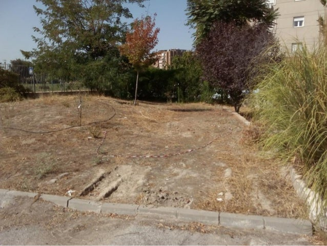 2016 08 31 Charca con excavadora