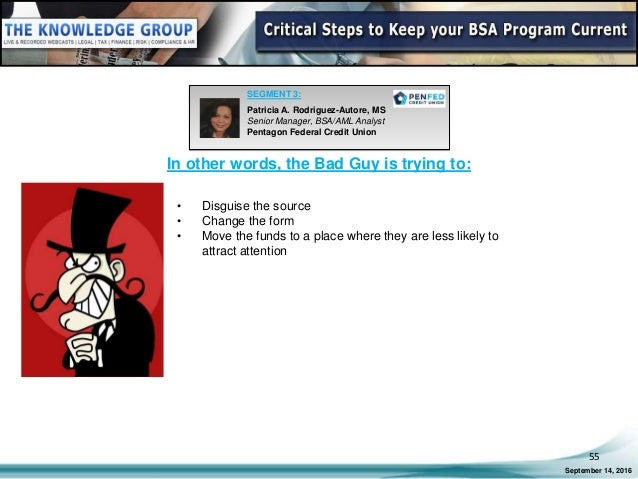 Webinar Slides: Critical Steps to Keep your BSA Program Current