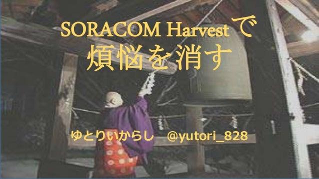 SORACOM Harvestで 煩悩を消す ゆとりいからし @yutori_828