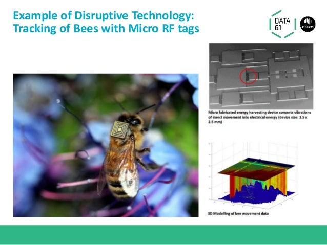 Example of Disruptive Technology: Tracking of Bees with Micro RF tags