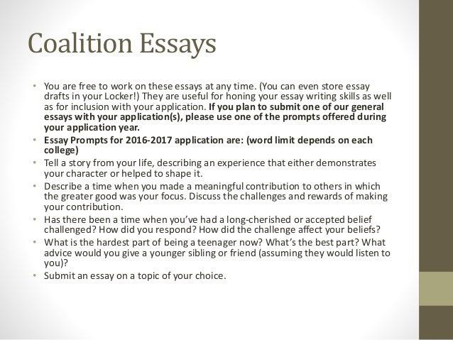 lehigh acronym essay